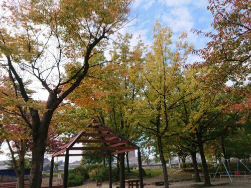 大瀬子公園(周辺)